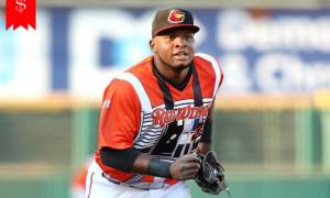 How much is Miguel Sano's net worth? Know about his Career and Awards